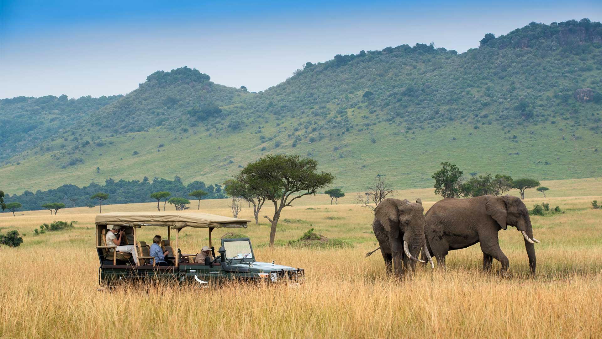 Κένυα-Σαφάρι-Ζανζιβάρη 77