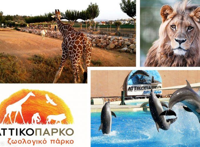 Αττικό Ζωολογικό Πάρκο, Αθήνα 8