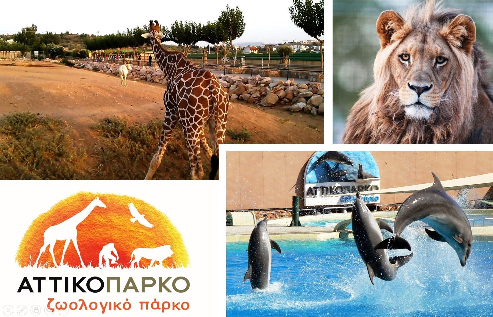 Αττικό Ζωολογικό Πάρκο, Αθήνα 53